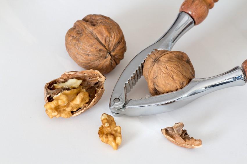 Orzechy włoskie – polecane produkty