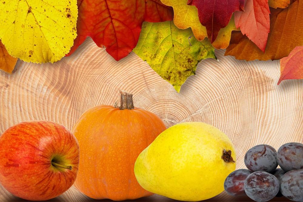 Jabłko, dynia, miód – właściwości zdrowotne