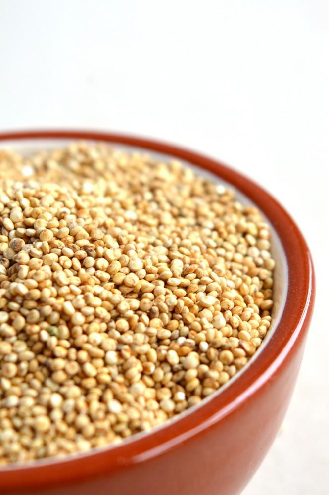 komosa quinoa